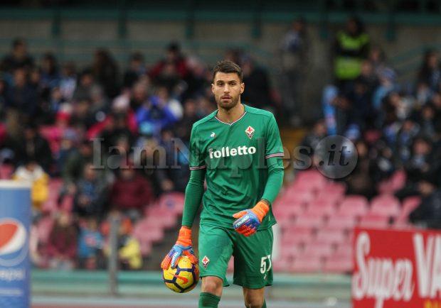 TMW – Fiorentina, Sportiello sempre più convincente: il Napoli torna alla carica per l'estremo difensore