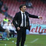 """Verona, Pecchia: """"I ragazzi affronteranno la squadra col piglio giusto, conta soprattutto saper gestire le sconfitte"""""""